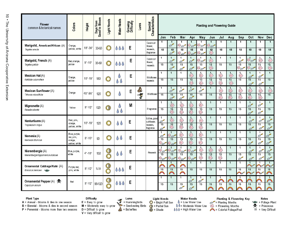 Flower planting calendar10